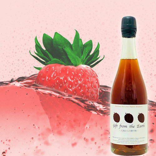 オーガニック・イチゴ100%のスパークリングワイン 伊藤農園